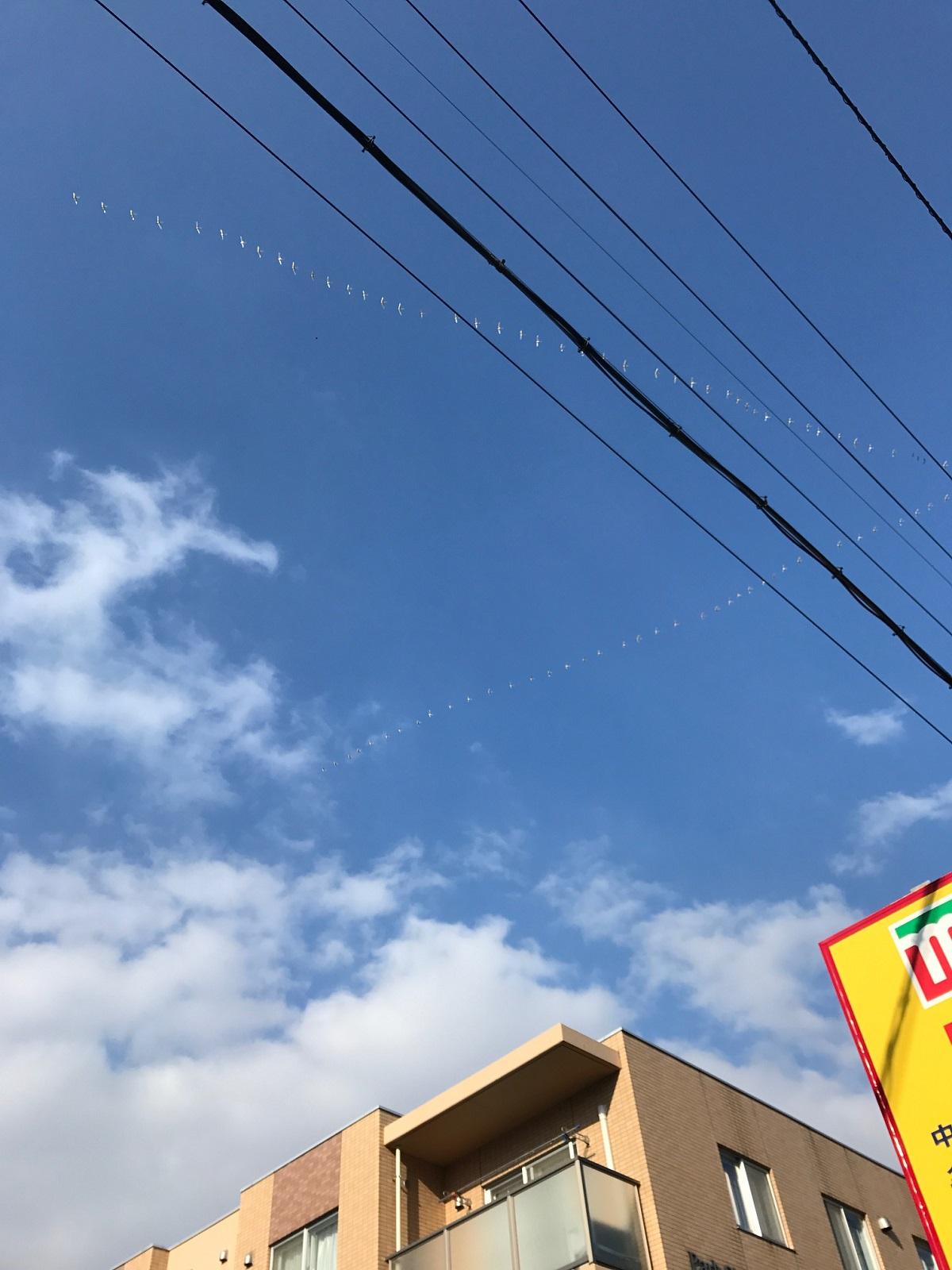 http://blog.iwate-eco.jp/2017/03/13/IMG_0646.jpg
