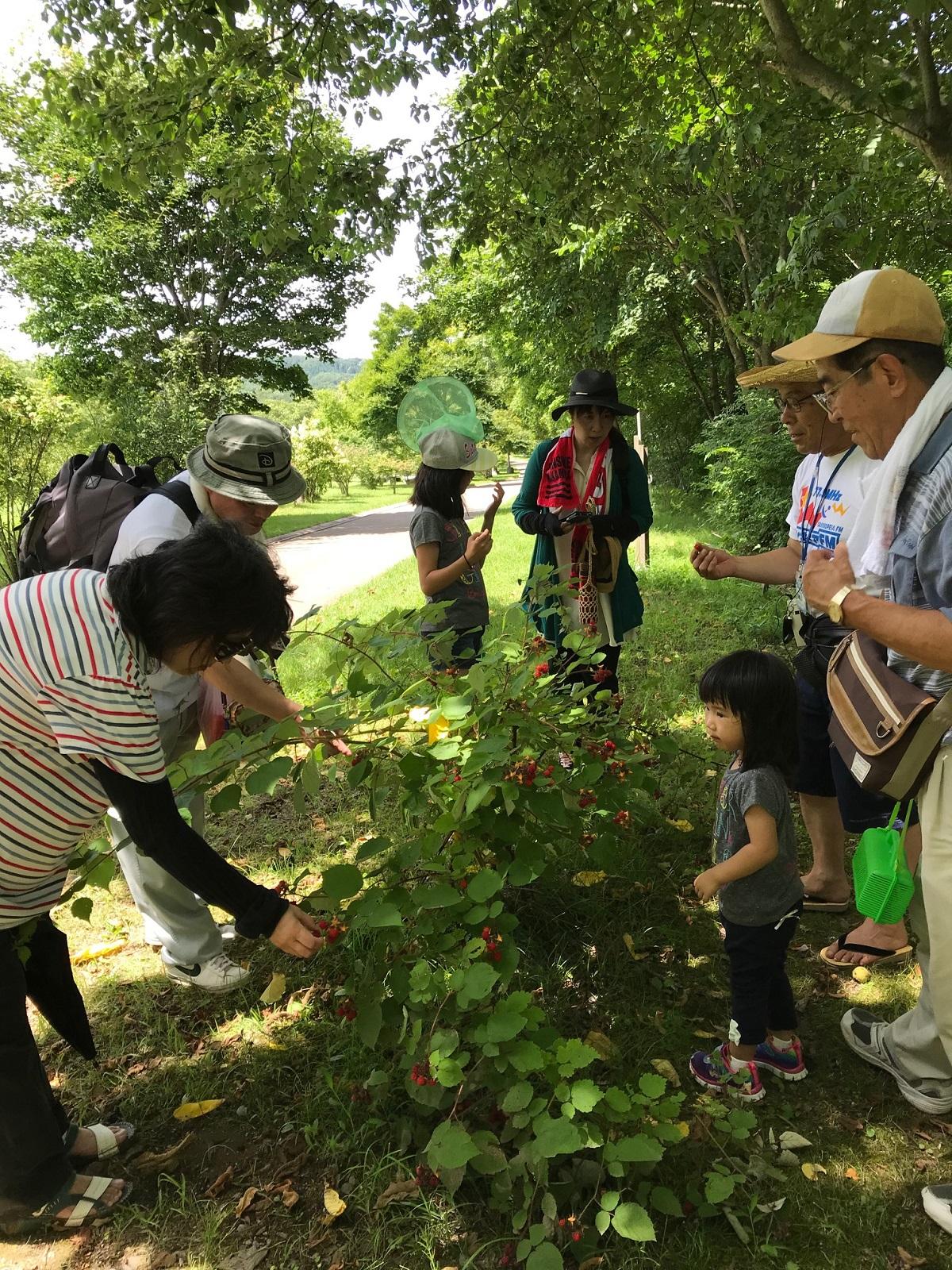 http://blog.iwate-eco.jp/2018/07/29/IMG_2581.jpg