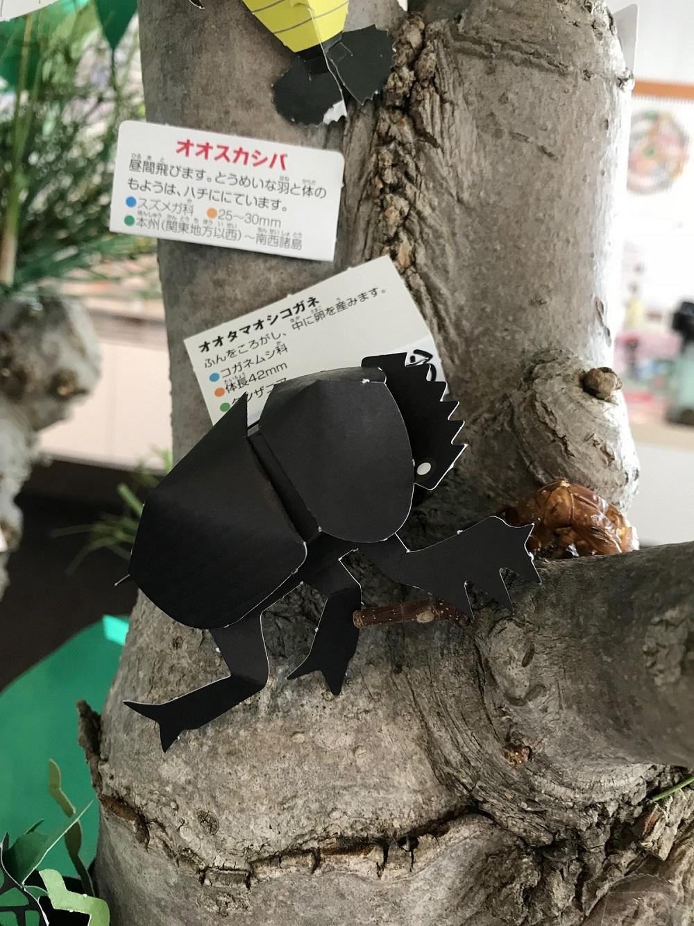 http://blog.iwate-eco.jp/2018/08/03/IMG_2606.jpg