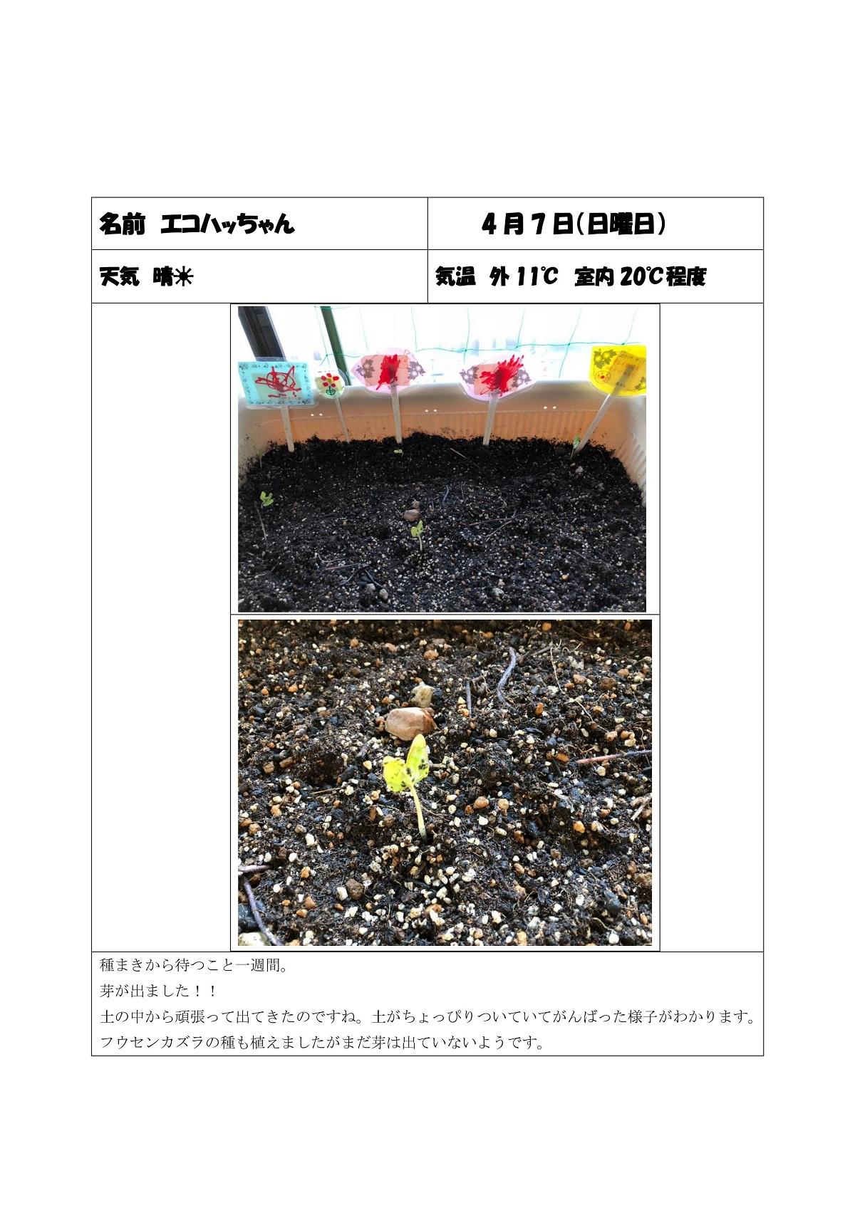 http://blog.iwate-eco.jp/2019/04/07/0002.jpg